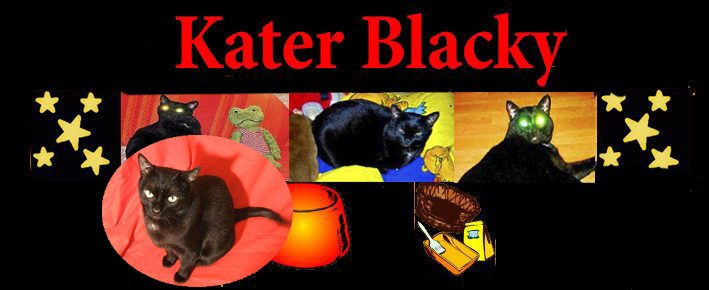 In Erinnerung – Kater Blackys Homepage